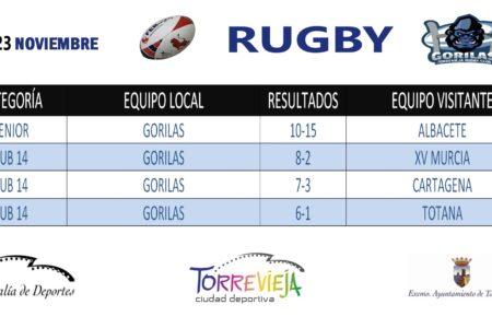 RUGBY GORILAS